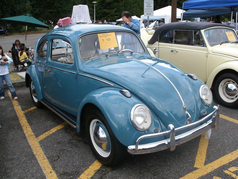 NW-VWs 013